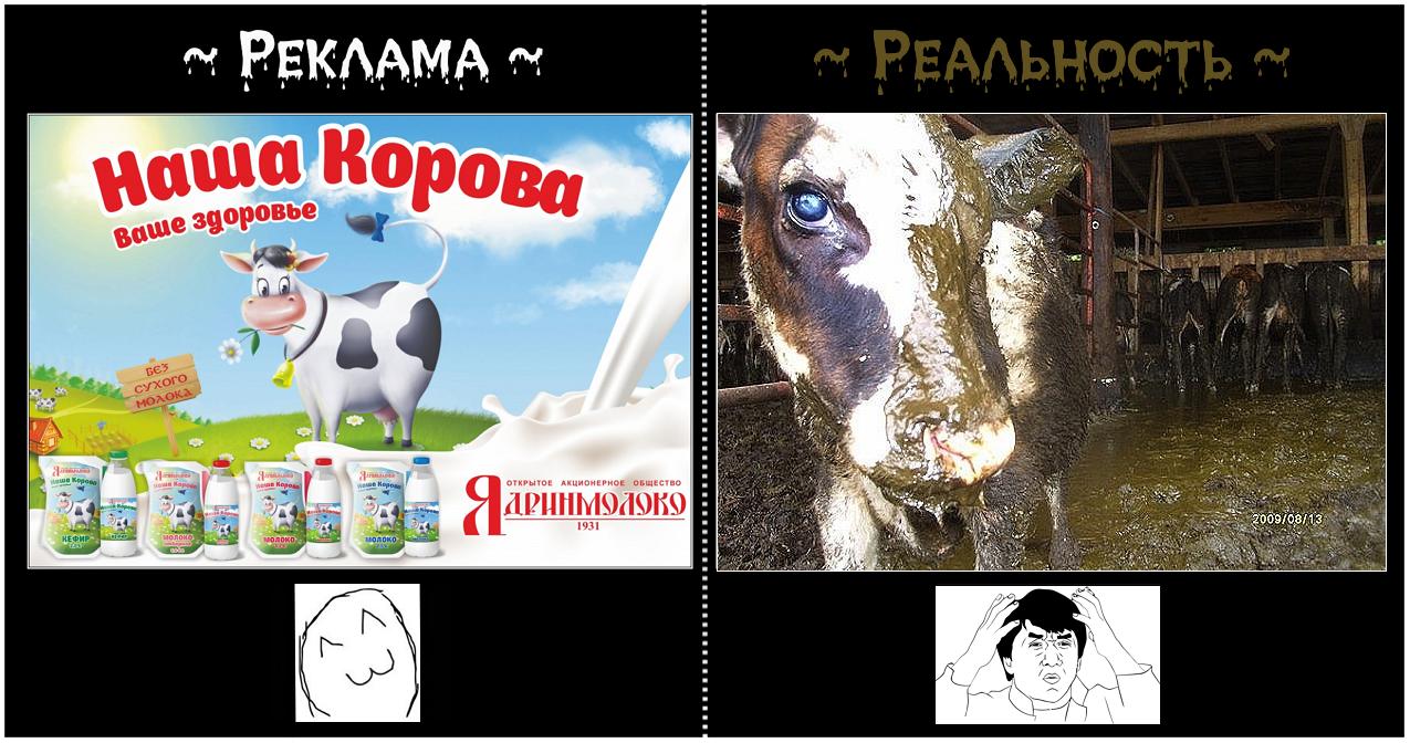 Reklama_Realnost.png
