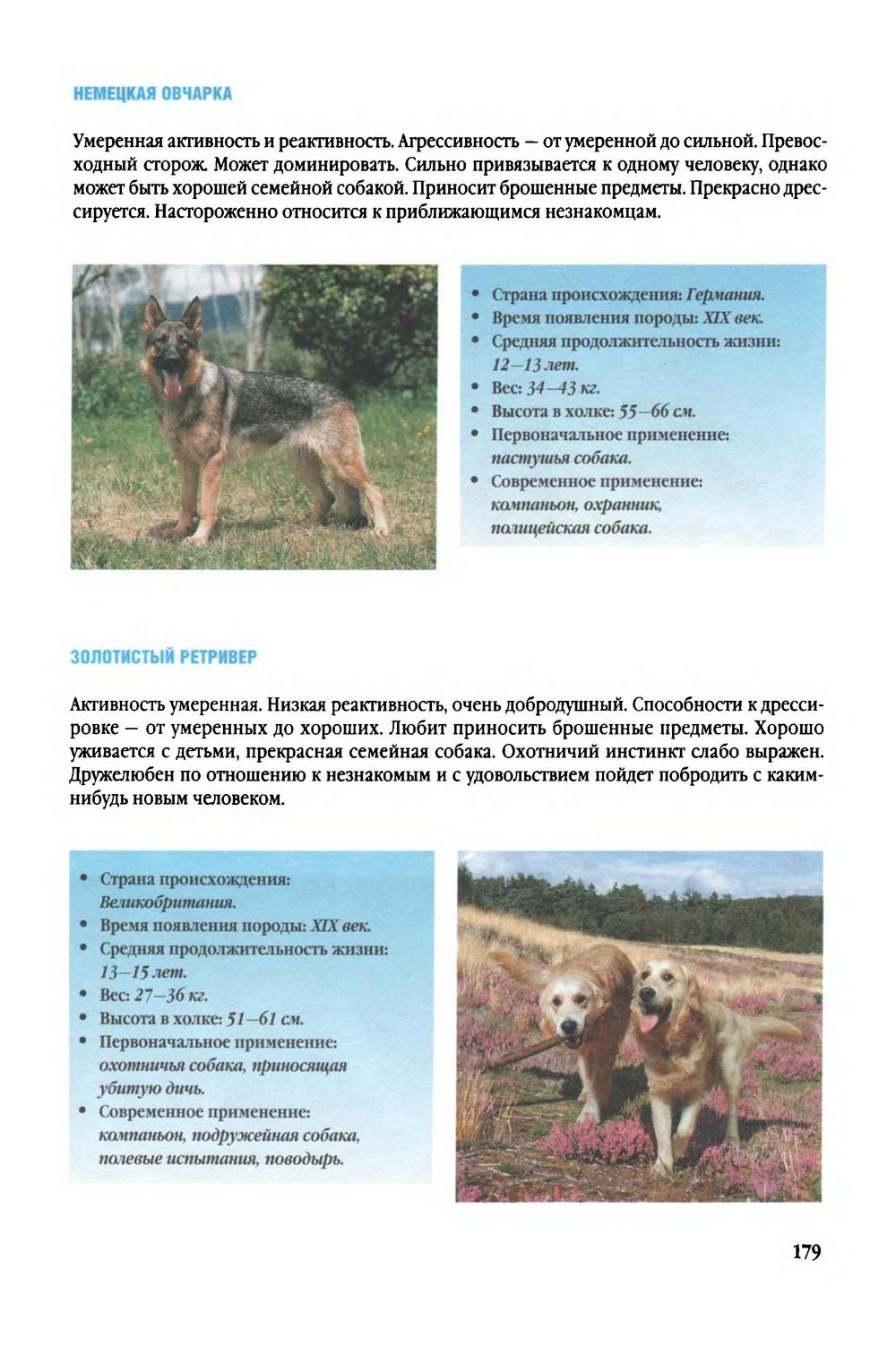 http://i2.imageban.ru/out/2014/01/18/f1adcb85da6aa861f6ea88fed3699008.jpg