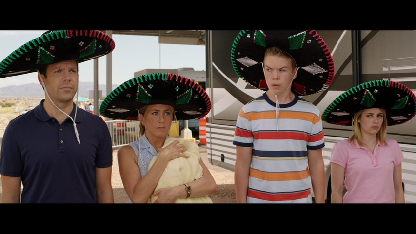 Мы – Миллеры / We're the Millers (2013) DVD9