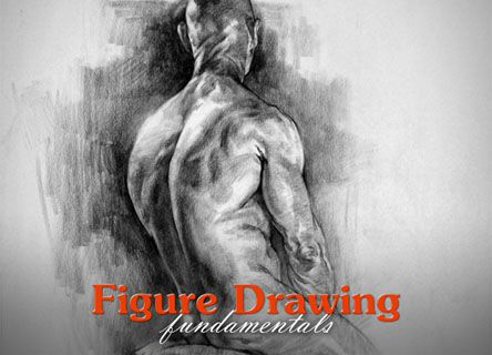Proko - Figure Drawing Fundamentals Course