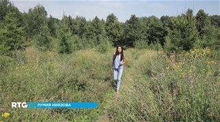 Парки Москвы. Битцевский лес [RTG] (2014) HDTVRip от GeneralFilm