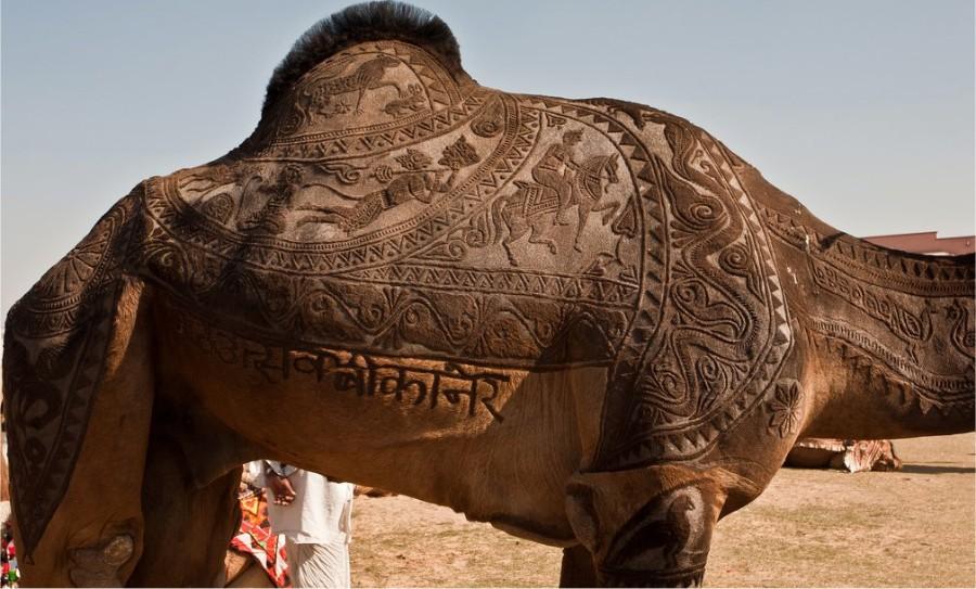 Резьба по верблюду