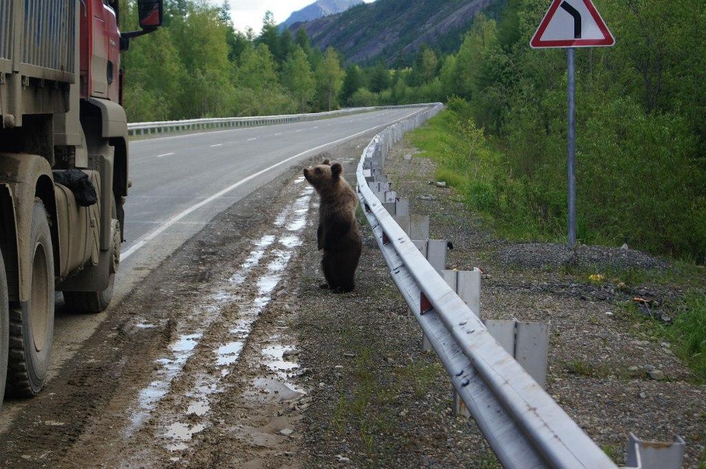 Автостоп в России 1