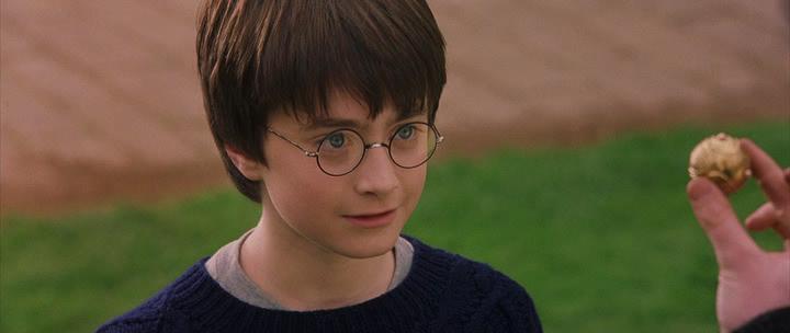 Гарри Поттер и философский камень / Harry Potter and the Sorcerer's Stone (2001) BDRip