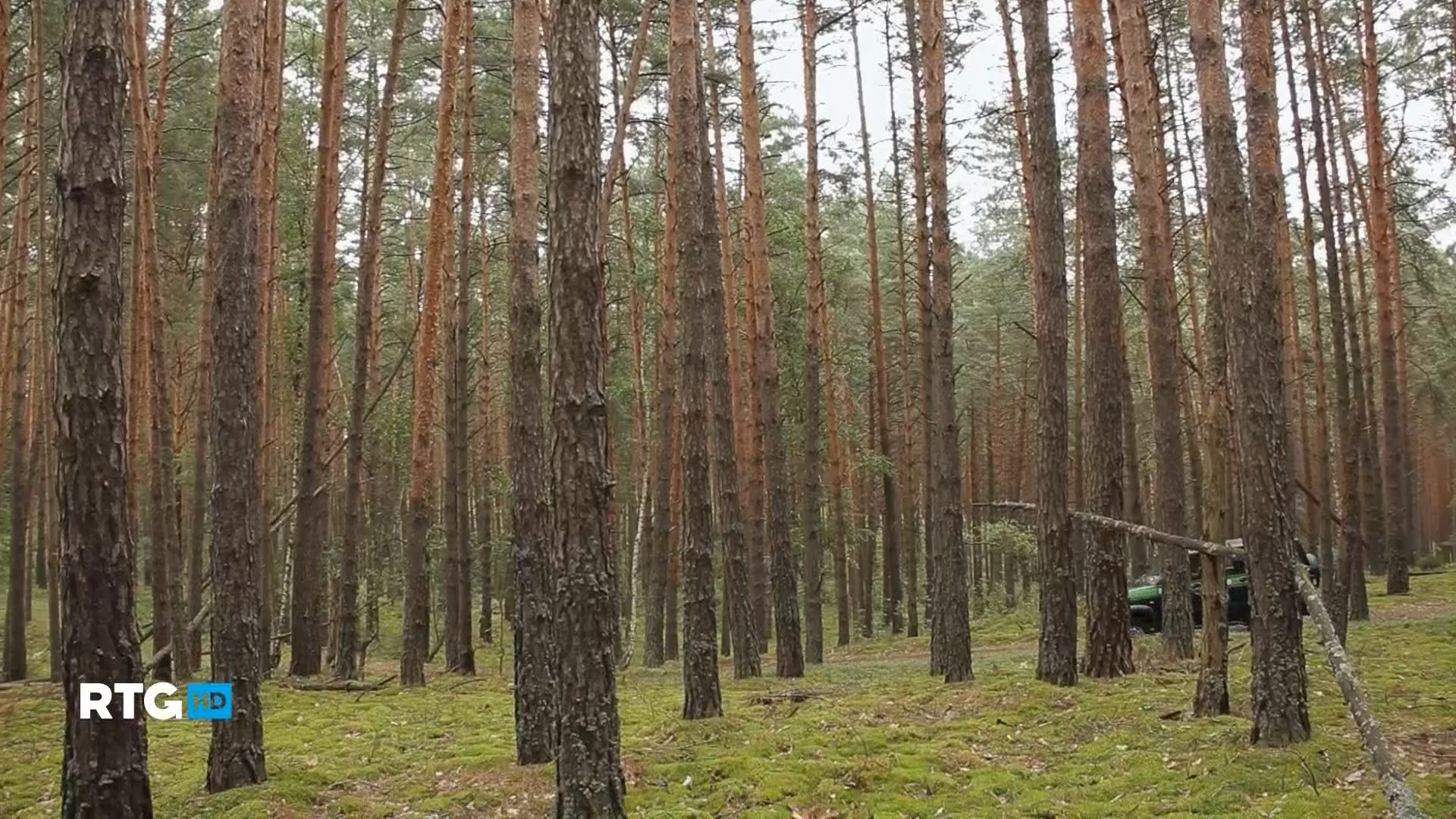 RTG. Заповедная природа Подмосковья (2014) HDTV 1080i