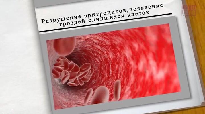 История одного обмана. О русском пьянстве (2014) DVDRip