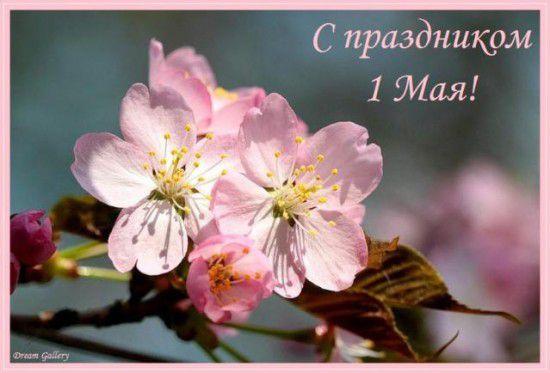 prazdnik_pervomay_foto_otkrytki.jpg