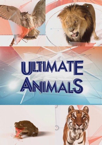 ������������� �������� / Ultimate Animals [1-6 ����� �� 6] (2015) HDTVRip