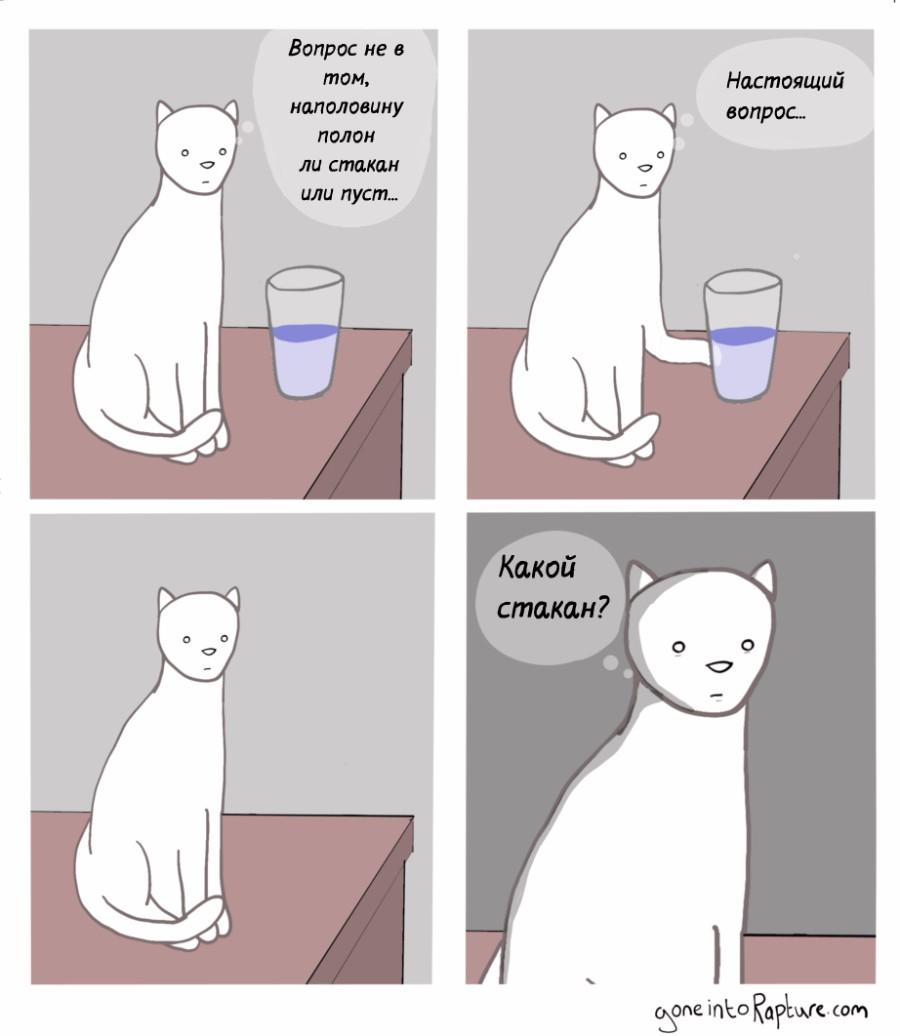 Кот-философ