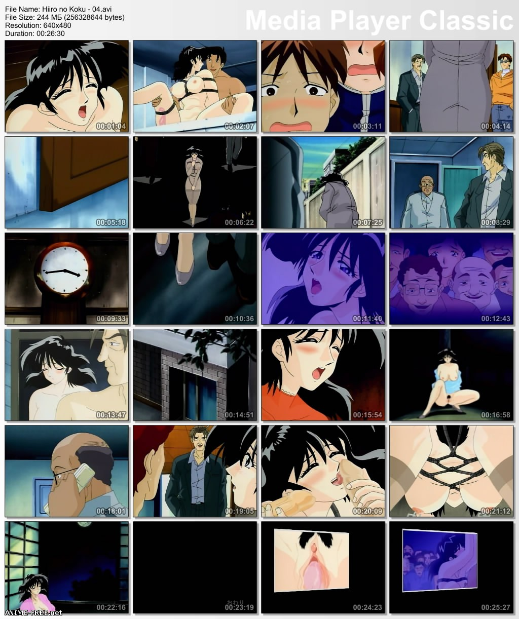 Hiiro no Koku / Secret of a Housewife / Секрет домохозяйки [5 из 5] [JAP,ENG,RUS] Anime Hentai