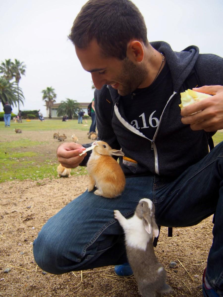 Кормим крольчат