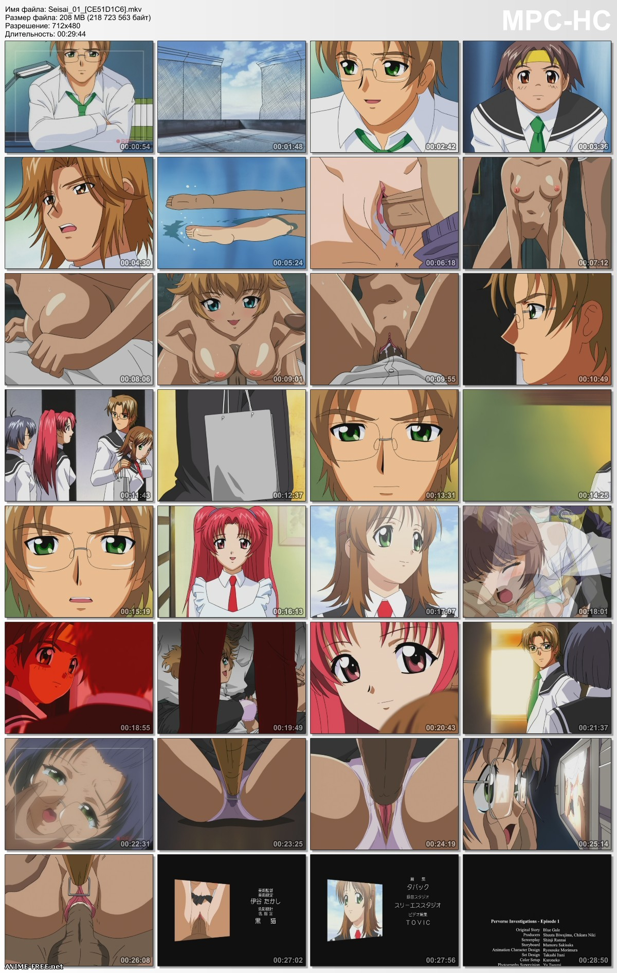 Seisai / Perverse Investigations / Извращенное расследование [2 из 2] [RUS,ENG,JAP] Anime Hentai