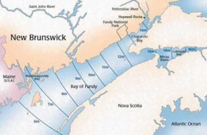 Схема движения приливной волны в заливе Фанди