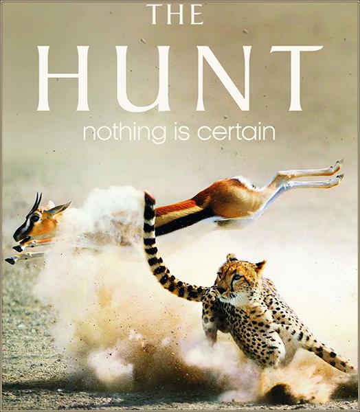 Охотники / Охота (2015)