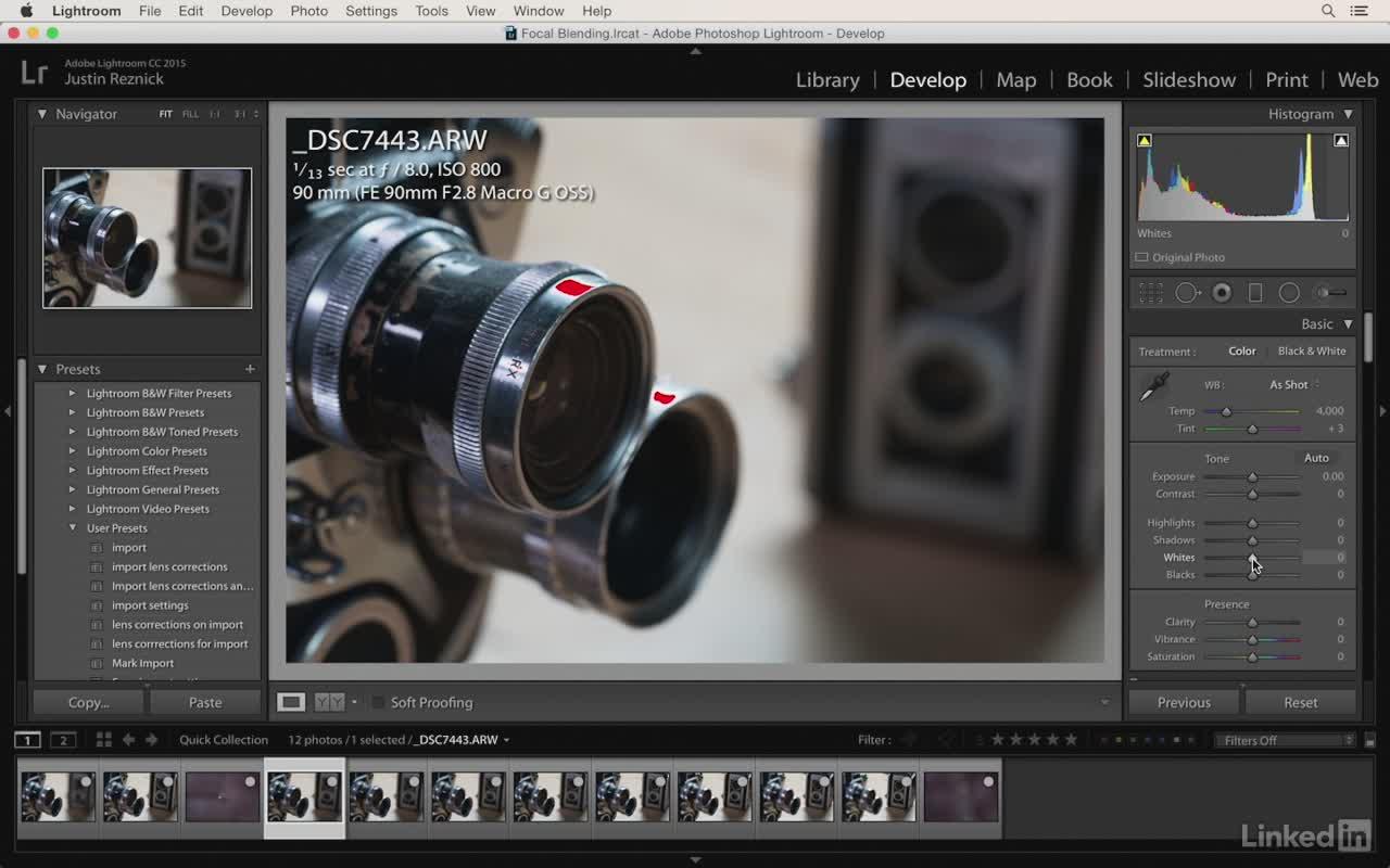 [Lynda, Justin Reznick] Photography Tips: Overcoming ...
