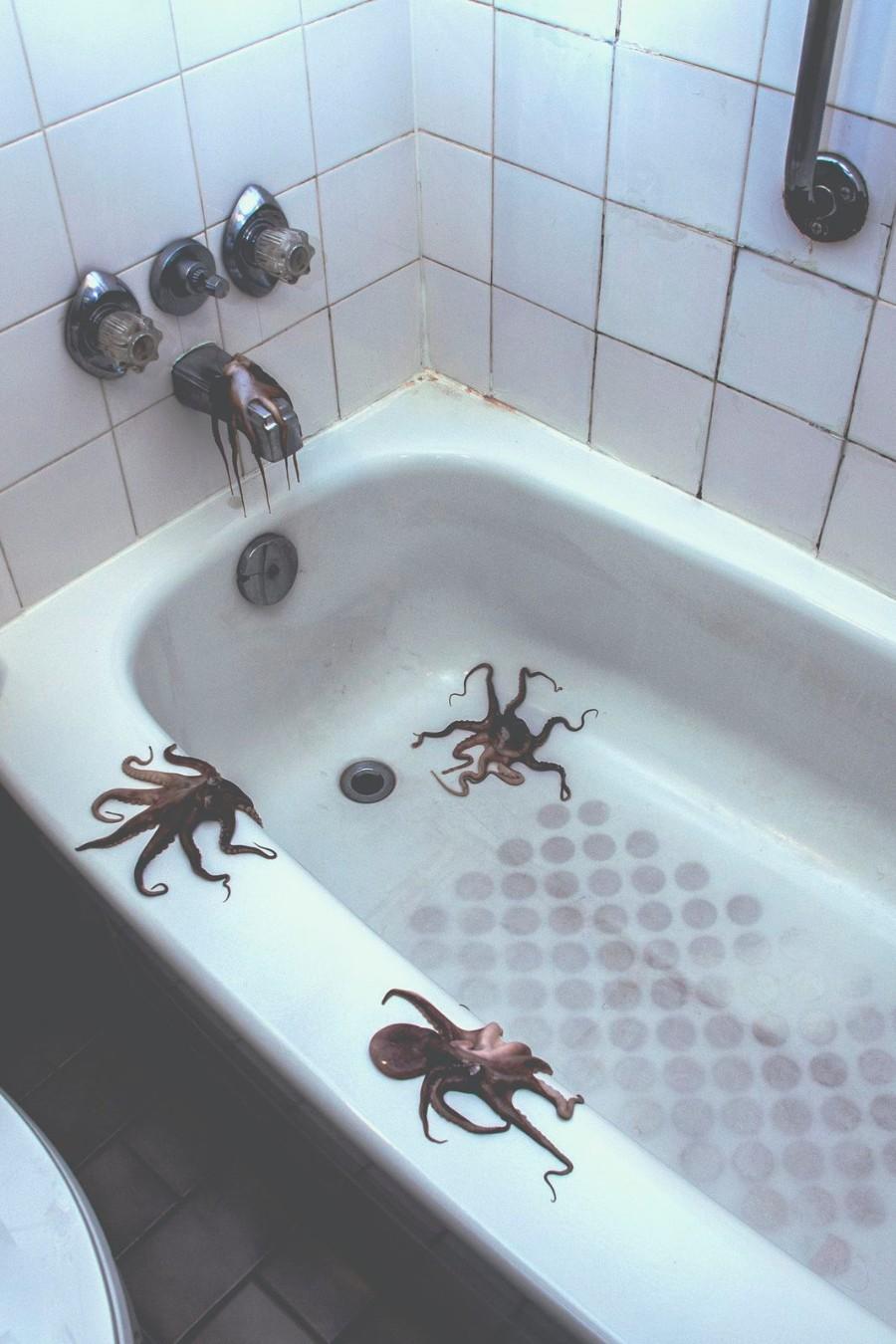 Осьминожки в ванной