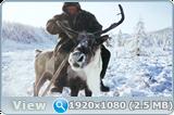 http://i2.imageban.ru/out/2016/10/17/ab71535387b756cf6dc932f331d94740.png