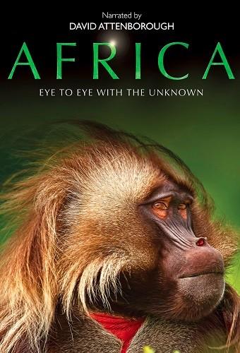 Africa 2013 COMPLETE 720p BluRay H264 AAC-RARBG