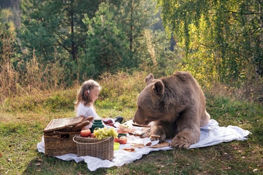 Пикник с медведем