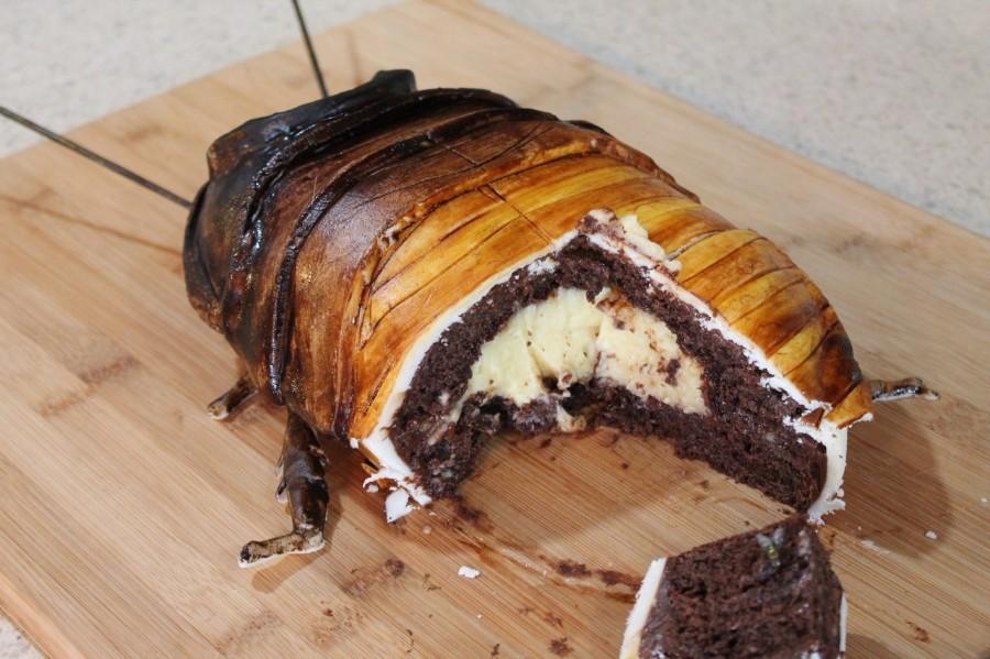 Тортик-таракан