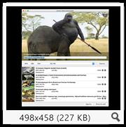 Ummy Video Downloader 1.54 (2017) Multi/Rus