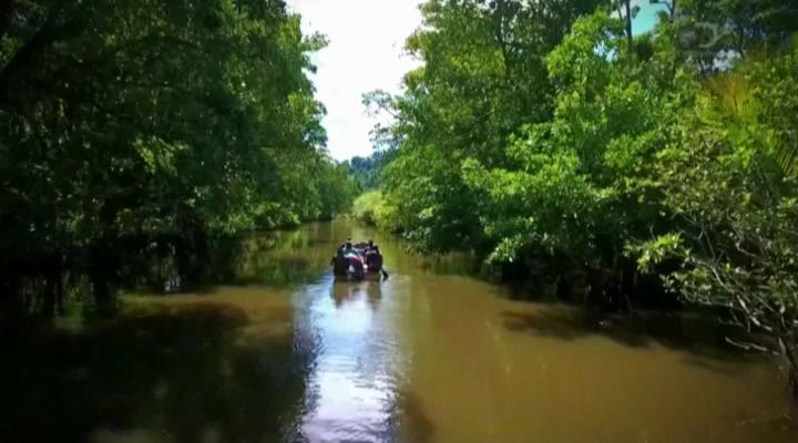 Discovery. Легенда о золоте крокодилов [01-08 серии из 08]   HDTVRip
