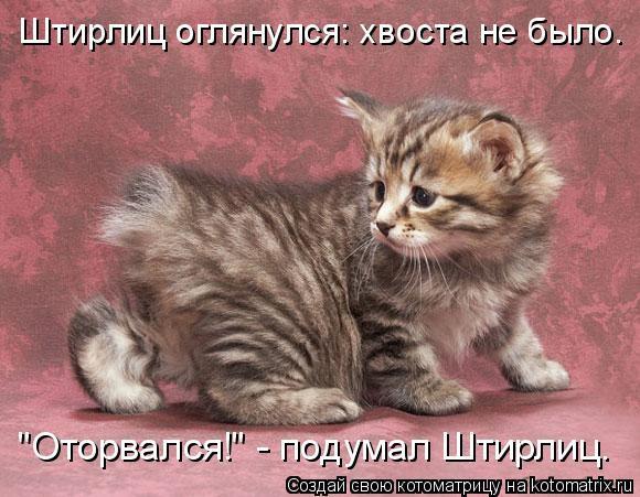 http://i2.imageban.ru/out/2017/07/02/fdb6b23ec91d5559ccc9bf4b2de57bf6.jpg