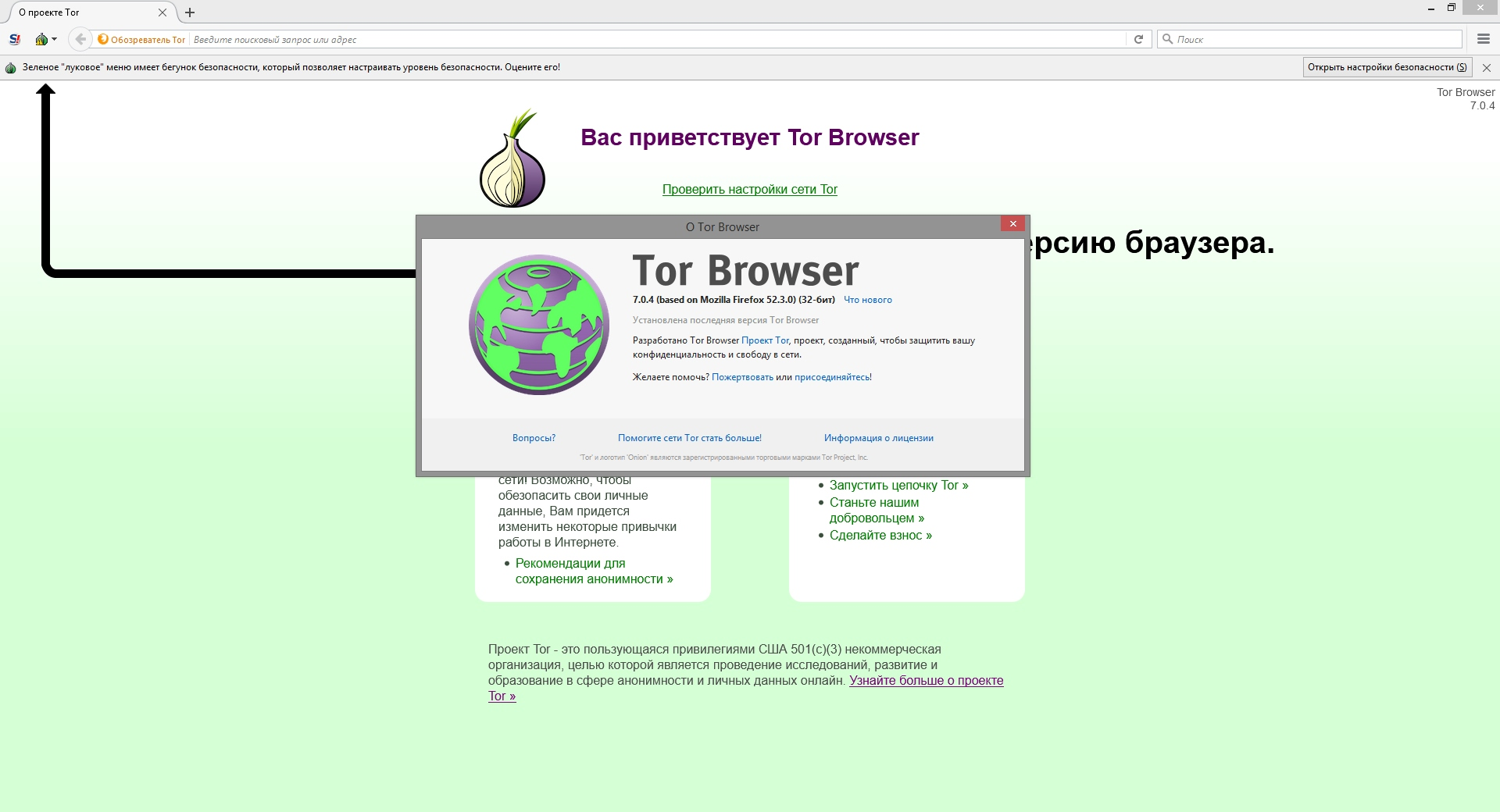 Tor Browser Bundle 7.0.4 Final (2017) Русский