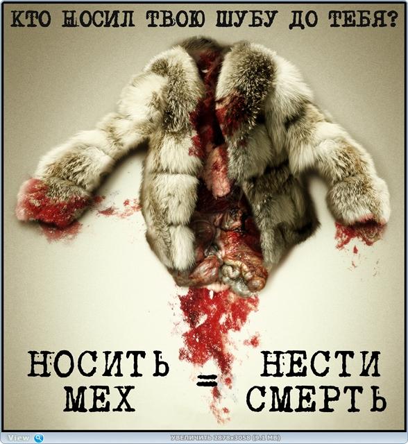 Без меха в России никак? | Этичные альтернативы 5f80e13251dd51a67bdedcc8e82c6b7b