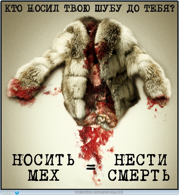 http://i2.imageban.ru/out/2017/10/12/5f80e13251dd51a67bdedcc8e82c6b7b.jpg