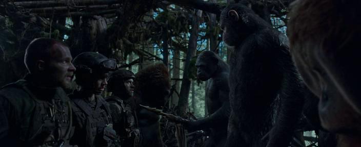 Планета обезьян: Война / War for the Planet of the Apes (2017) WEB-DLRip