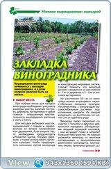http://i2.imageban.ru/out/2017/12/03/1b1b01ce57d8e37d5b2a0472c6a61c54.jpg
