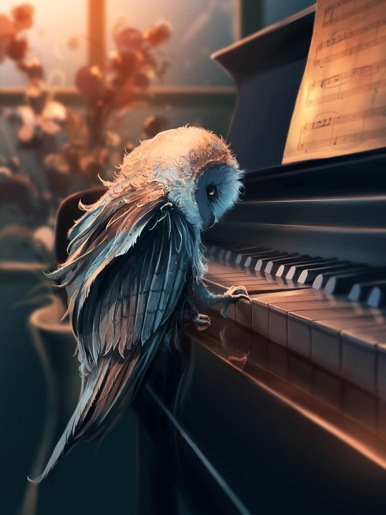 Сова-пианист