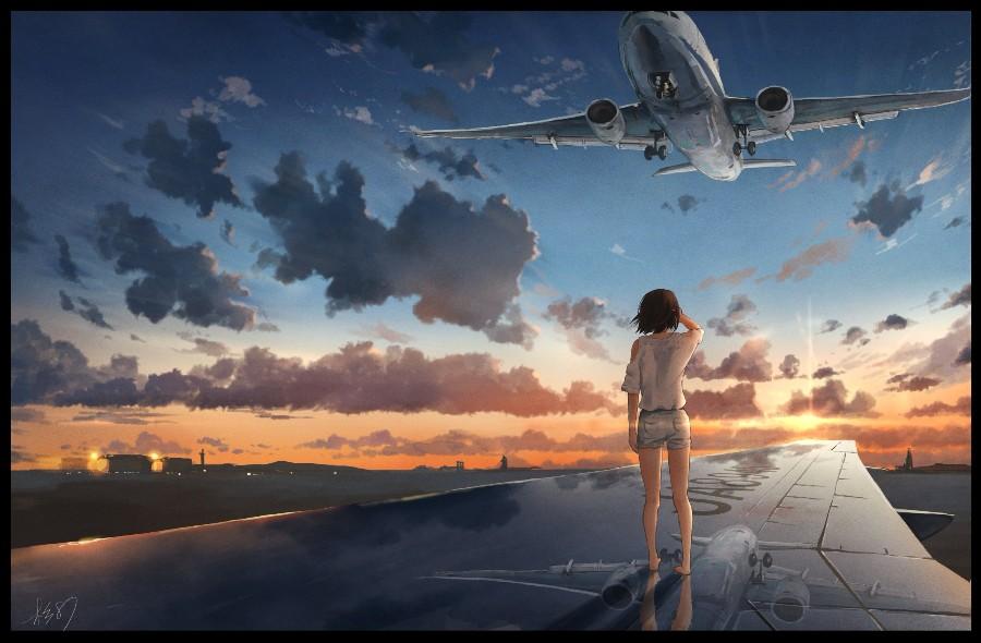 На крыле самолета