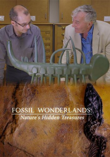 Ископаемые чудеса: Скрытые сокровища природы (Страна ископаемых чудес) / Fossil Wonderlands: Nature's Hidden Treasures (2014) HDTVRip [H.264/720p-LQ] (Серии 1-3 из 3)