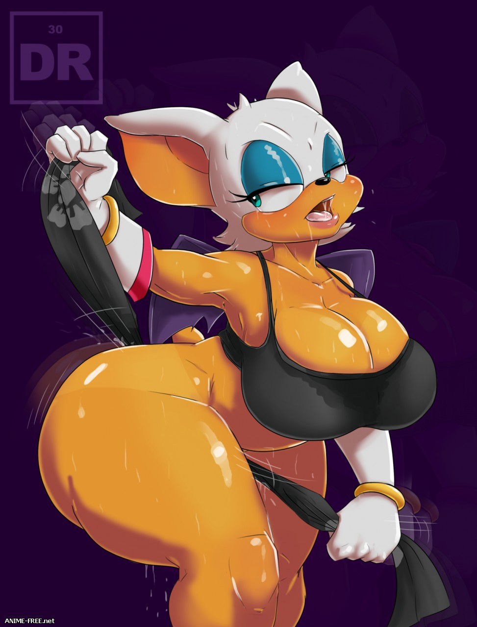 Rouge the Bat (Collection) [Ptcen] [JPG,GIF,PNG] Hentai ART
