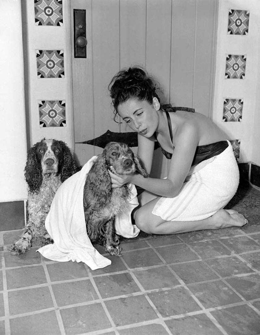 Elizabeth-Taylor-with-her-dogs.jpg