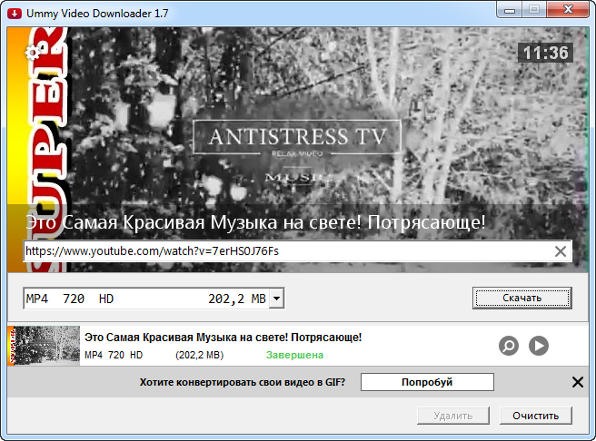 Ummy Video Downloader [1.10.3.1] (2019/PC/Русский), RePack & Portable