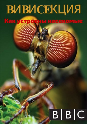 BBC: Вивисекция. Как устроены насекомые / Insect Dissection: How Insects Work (2013) HDTVRip [H.264/720p-LQ] [PR]