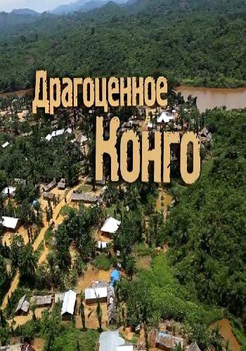 Драгоценное Конго (2017) HDTVRip