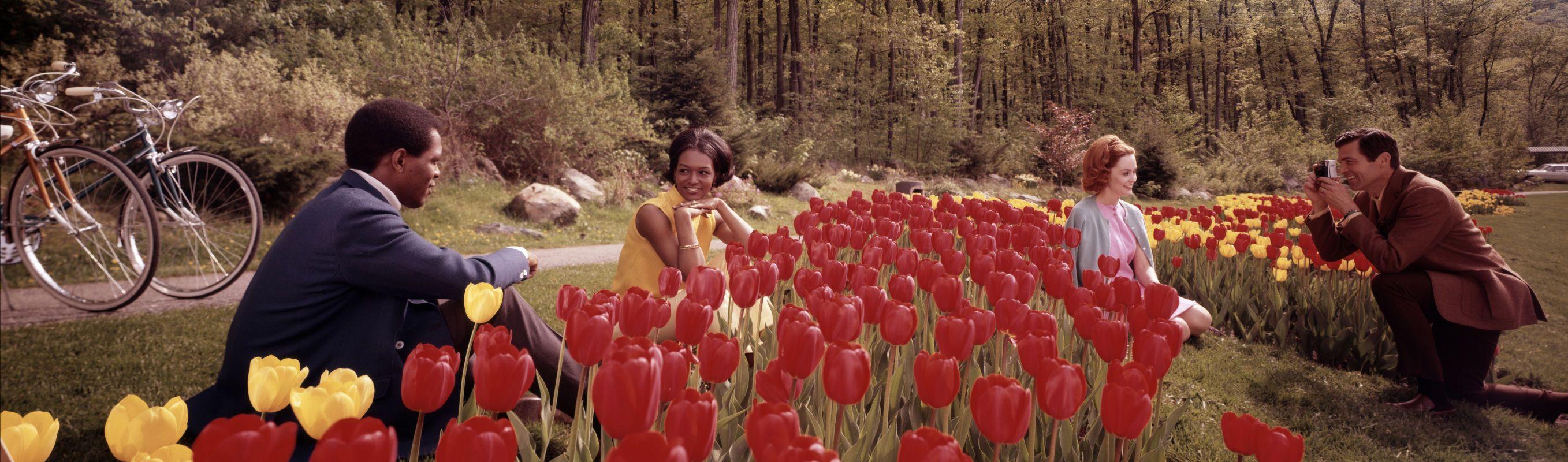 sterling-gardens-tuxedo-new-york-1969-colorma-319-c2bd-kodak-_1.jpg