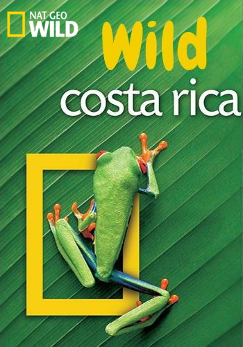 NGW. Дикая природа Коста-Рики / Wild Costa Rica (2000) HDTV [H.264 / 1080i]