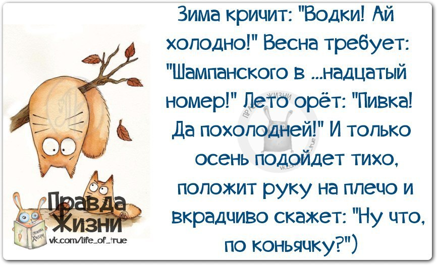 https://i2.imageban.ru/out/2018/11/15/88f9121dad2cfd0e249ae70d2a822115.jpg