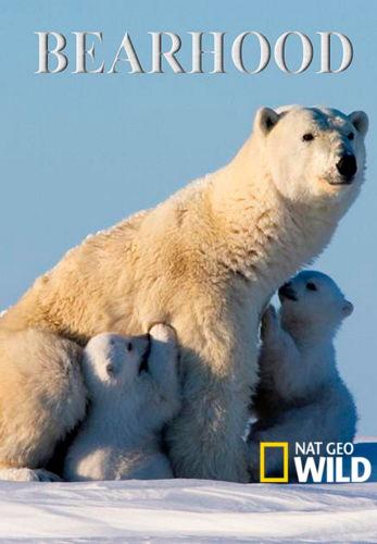 NGW: Медвежья школа / Bearhood (2014) HDTV [H.264/1080i-LQ]