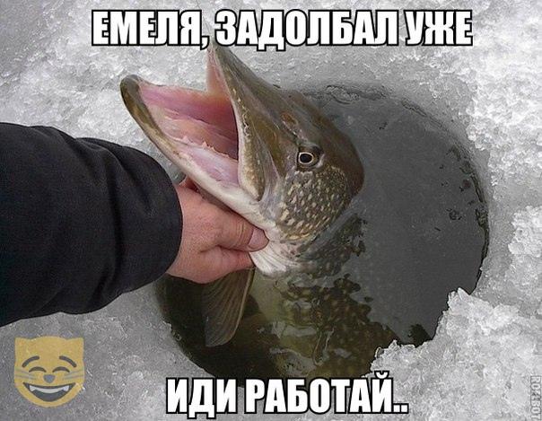 https://i2.imageban.ru/out/2019/03/04/fe6021db9c6c3ffe81ccc2d47fb3b4d7.jpg