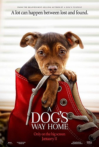 A Dogs Way Home 2019 1080p WEB-DL DD5 1 H264-CMRG