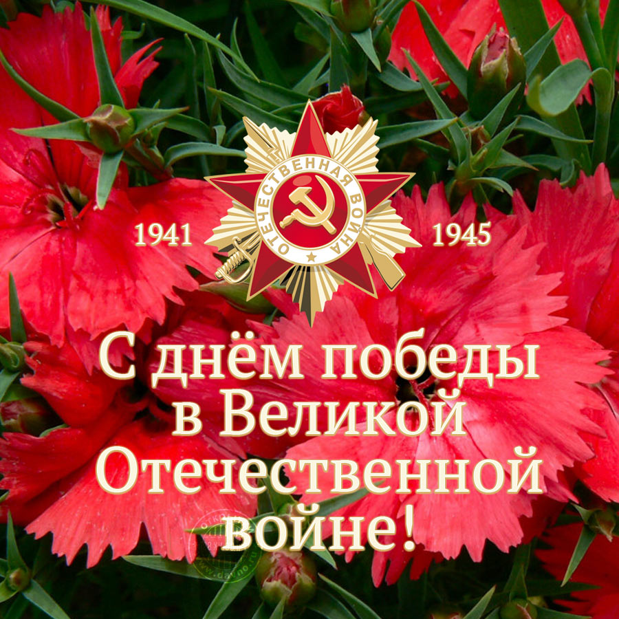 https://i2.imageban.ru/out/2019/05/09/8c085ba753717ea96474e4935cbb1160.jpg