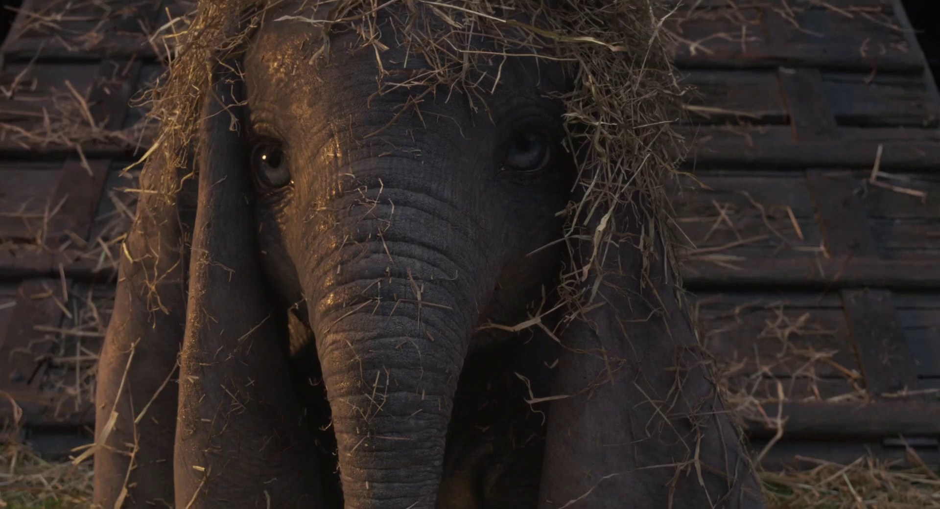 Dumbo 1080p Bluray DTS-HD MA 7 1 X264-EVO