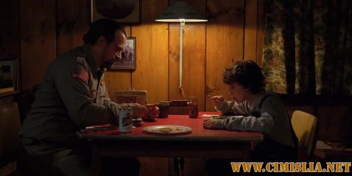 Очень странные дела / Stranger Things [S02] [2017 / WEB-DLRip]