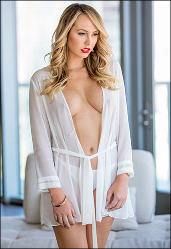 Brett Rossi - High Rise Anal / The Art Of Anal Sex 9 (2018) WEB-DL 720p |